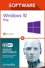 Windows 10 Pro + ESET NOD32 Antivirus 12 monate